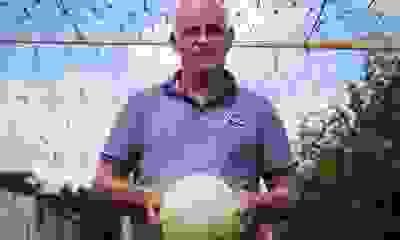 """Antonio Alzamendi: """"Mi corazón el sábado en el clásico va por Independiente"""""""